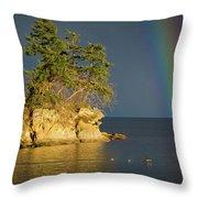 Island Rainbow Throw Pillow