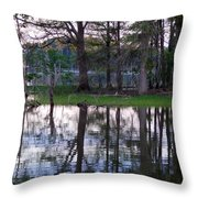 Island Reflections Throw Pillow