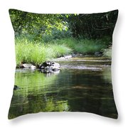 Island Sanctuary Throw Pillow