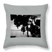 Island - View -  Black And White Throw Pillow