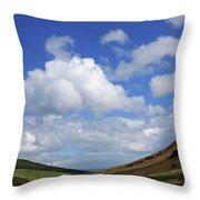 Isle Of Arran Throw Pillow