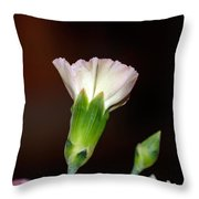 Isolated Flower  Throw Pillow