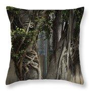 Israel, Tree Trunk Throw Pillow