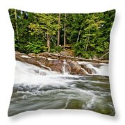 It All Comes Together Throw Pillow