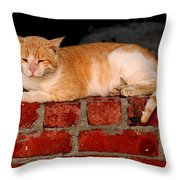 It Is That Simple It's My Wall My Place Throw Pillow