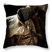 It Is The Way You Ride Throw Pillow