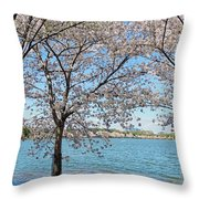 It Must Be Spring In Washington Throw Pillow