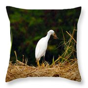 It Was A Bad Day For Bats II Throw Pillow