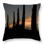 Italian Cypress Trees Silhouetted Throw Pillow