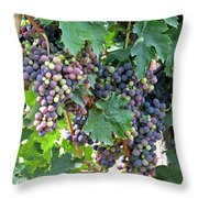 Italian Grapes Throw Pillow