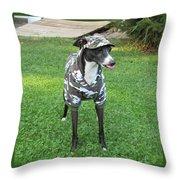 Italian Greyhound Army Throw Pillow