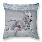 Italian Greyhound On The Beach Throw Pillow