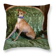 Italian Greyhound Portrait Throw Pillow