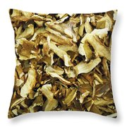 Italian Market Dried Mushrooms Throw Pillow
