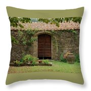 Italy Door Twenty Four Throw Pillow