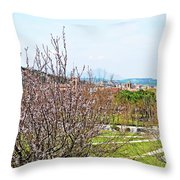 Italy In Spring Throw Pillow