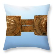 Italy, Sicily - Segesta Temple Detail Throw Pillow