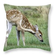 Itchy Fawn Throw Pillow