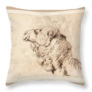 itle Head of a Dromedary Throw Pillow