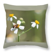Its A Bee's World Throw Pillow