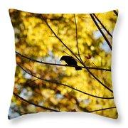 It's A Bird Throw Pillow