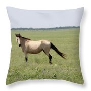 It's A Horse Of  Course Throw Pillow