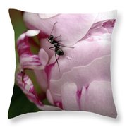 It's A Small World Throw Pillow by Valeria Donaldson