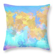 It's A Sunny Day  Throw Pillow