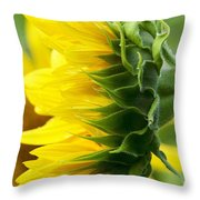 It's All About The View Throw Pillow