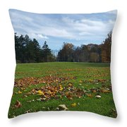 It's Amazing Out There Throw Pillow