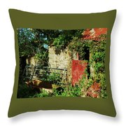 It's Bath Time Throw Pillow