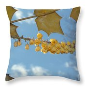 Its Blossoms Time Throw Pillow