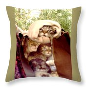It's Cold Throw Pillow