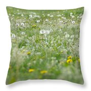 It's Dandelion Time Throw Pillow