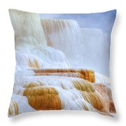 It's In The Details Throw Pillow