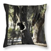 It's Knot A Hole Throw Pillow