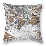 It's Mid May. We're Fast Approaching The End Of Our Snow Season.  Throw Pillow