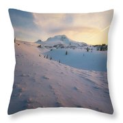 It's Not Spring Yet Throw Pillow