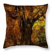 It's Not The Angel Oak Throw Pillow