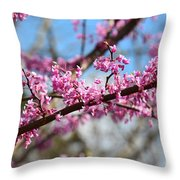 It's Spring 2016 Throw Pillow