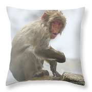 It's Way Too Cold Throw Pillow