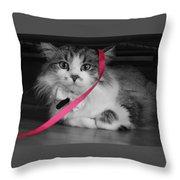 Itz A Cat Throw Pillow