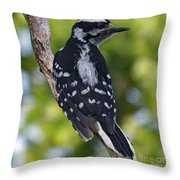 I've Got Your Back - Female Downy Woodpecker Throw Pillow