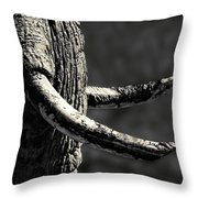 Ivory And Mud Throw Pillow