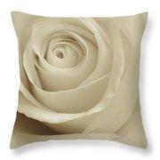 Ivory Rose Throw Pillow