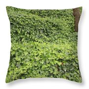 Ivy-covered Hill Throw Pillow