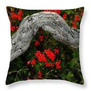 Ivy Geraniums And Log Throw Pillow