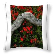 Ivy Geraniums And Log Poster Throw Pillow