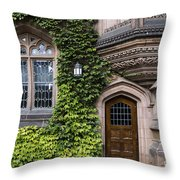 Ivy League Princeton Throw Pillow