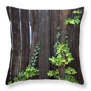 Ivy On Fence Throw Pillow